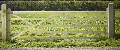 Somerfield 5 bar field gate