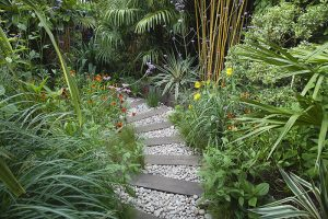 weathered wooden Sleeper path