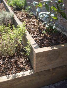 Raised herb bed