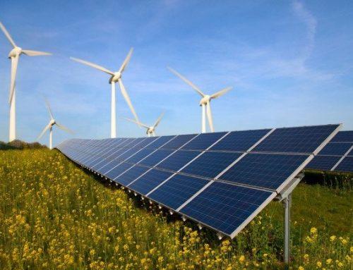 Green energy for Charltons!